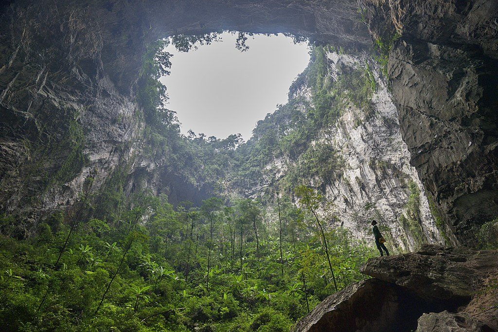 Botanic Time: cueva de Son doong